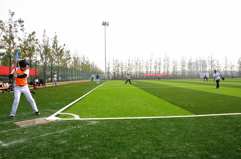 山东省棒垒球锦标赛在临港区开赛韩国骑马游戏视频